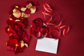 Bouquet of red roses with white cards and rose petals on a red background — Stock Photo