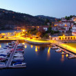 Dock in Douro River - Photo