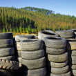 Stock Photo: Old Tires near trees