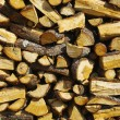 Piled firewood - Stock Photo