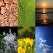 Basic elements of nature and ecology — Stock Photo