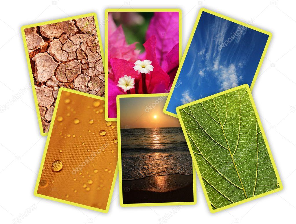 Five elements of nature essay sample