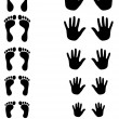 Foot and palm silhouettes of toldler, kid and adult — Stock Vector #10677778