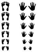 Foot and palm silhouettes of toldler, kid and adult — Stock Vector