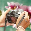 Royalty-Free Stock Photo: Shooting with a slr camera