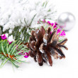 Christmas background with fir branch — Stock Photo #10251099