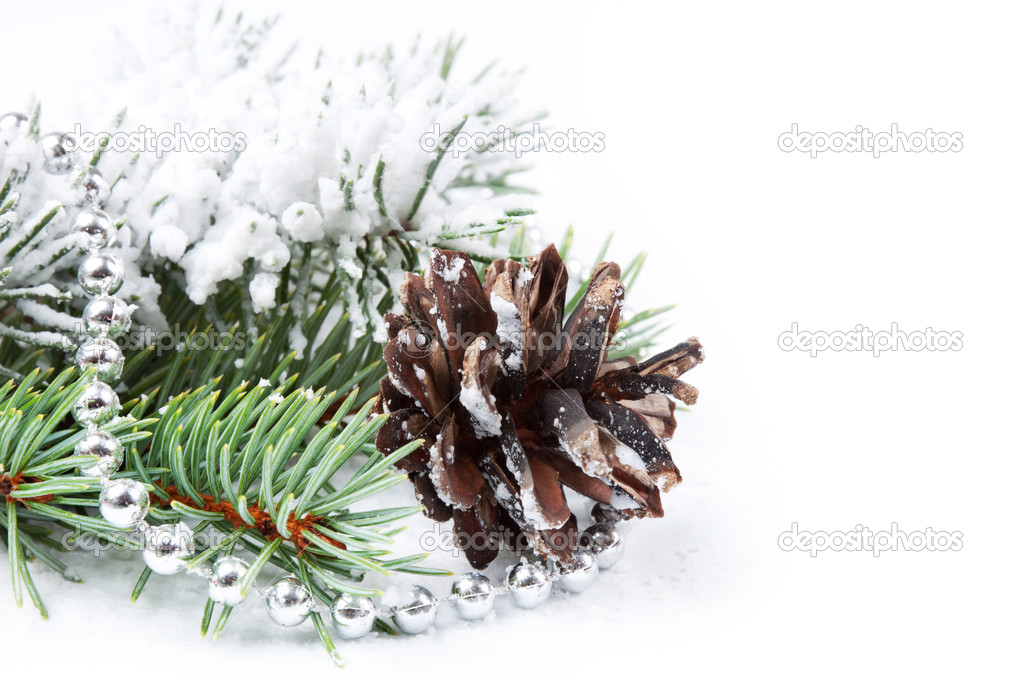 Christmas background with bead, pine cone and fir branch  Stock Photo #7961613