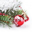 Stock Photo: Red decorations and fir branch
