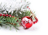 Red decorations and fir branch — Stock Photo