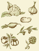 Vintage vegetables — Vector de stock