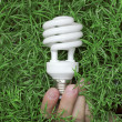 Energy saving light bulb in hand on a green grass background — Stock fotografie