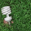 Energy saving light bulb in hand on a green grass background — Stockfoto