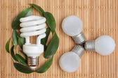 Eco énergie concept — Photo
