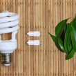 Eco energy concept with light bulb — Stock Photo