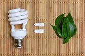 Eco energy concept with light bulb — Stock Photo