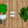 Eco energy concept with light bulb — Stock Photo #9918558