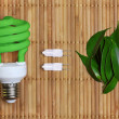 Eco energy concept with light bulb — Stock Photo #9937595
