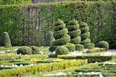 Garden.Landschaft.Design. — Stock Photo