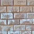 Wall from the bricks — Stockfoto
