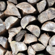 Texture of a wood — Stock Photo