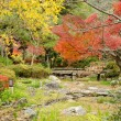 Japanese park in autumn — Stock Photo