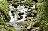 Detail of a wild river — Stock Photo
