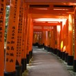 图库照片: Torii gates at Inari shrine in Kyoto