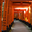 Stock Photo: Torii gates at Inari shrine in Kyoto
