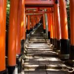 Torii gates at Inari shrine in Kyoto — Stock Photo #8502071