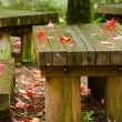 Stock Photo: Red leaves on wooden table