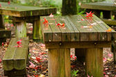 Red leaves on wooden table — Stock Photo