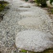 Stock Photo: Stepping stones in japanese garden
