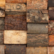 Bark of different trees, background — Stock Photo