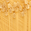 A field of wheat, a conceptual image of pasta — Stok fotoğraf