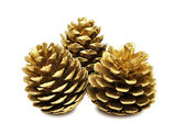 Golden pine cones — Stock Photo