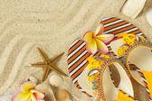 Sandalias, conchas, estrellas de mar y frangipani en arena — Foto de Stock
