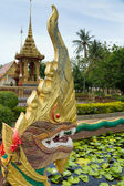 Figure of golden Naga (Dragon) in Chalong temple, Phuket, Thailand — Stock Photo