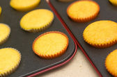Freshly backed cupcakes on a backing tray. Shallow depth of fiel — Stock Photo