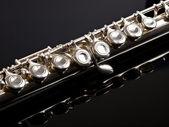 Silver Flute — Stock Photo