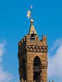 塔在佛罗伦萨 — 图库照片