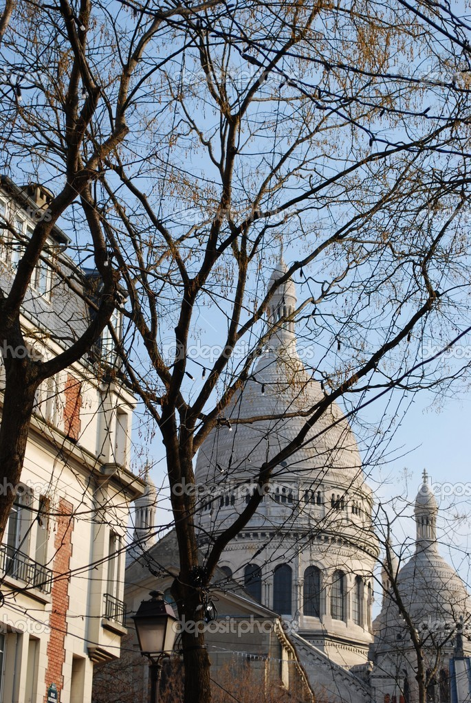 The Basilica of Sacre Coeur behind the trees, Montmartre, Paris, France — Stock Photo #9297847