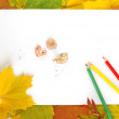 Leaves, paper and pencils - Stock Photo