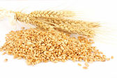 Wheat ears hill — Stock Photo