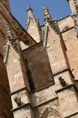The Cathedral of Santa Maria of Palma — Stock Photo