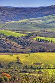 поля и деревья в известных saturnia долине в тоскане — Стоковое фото