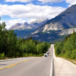 Icefields Parkway between CanadiRocky Mountains — Stock Photo #9090503