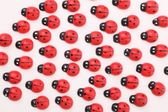 Wooden ladybugs — Stock Photo