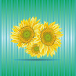 Sunflower background — Stock Vector