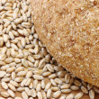 Bread and wheat seeds — Foto Stock