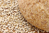 Bread and wheat seeds — Stock Photo